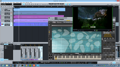 life_essence_video_score_2013-forest